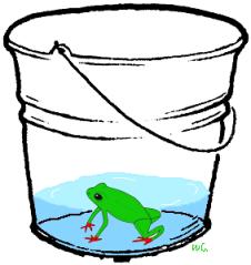 frogbucket